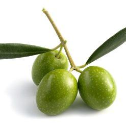 olivovy haj vona do mydla a sviecok