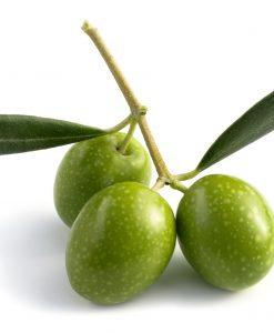 Olivový háj vôňa do mydla a sviečok
