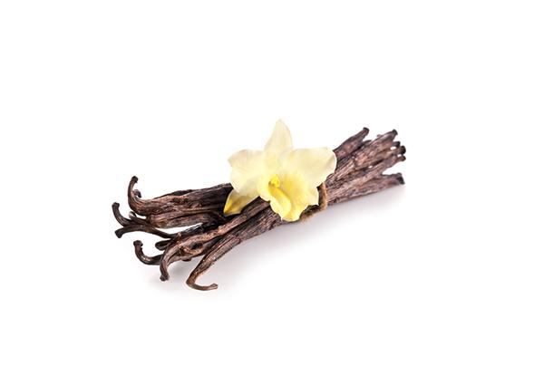 Orchidea s vanilkou vôňa do mydla a kozmetiky