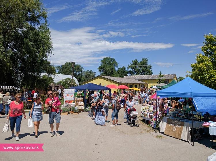 kreativny-piknik-v-hrubej-borsi-leto-2016-9