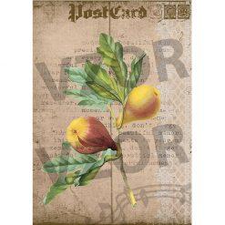 Ryžový papier na dekupáž R412