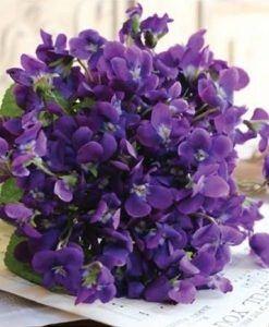 kvetinova-vona-do-mydla-a-kozmetiky-fialka