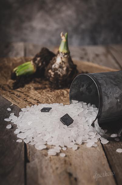 Hyacint vo vosku originálna jarná dekorácia