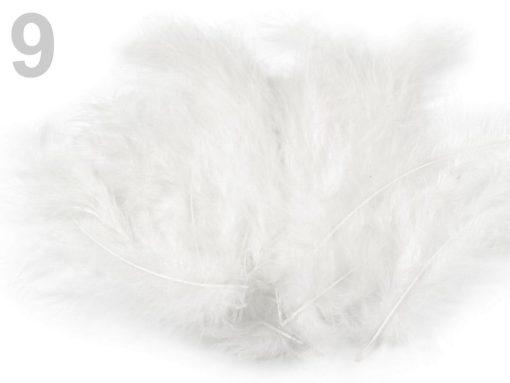 pstrosie pierka biela