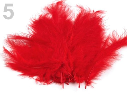 pstrosie pierka cervena