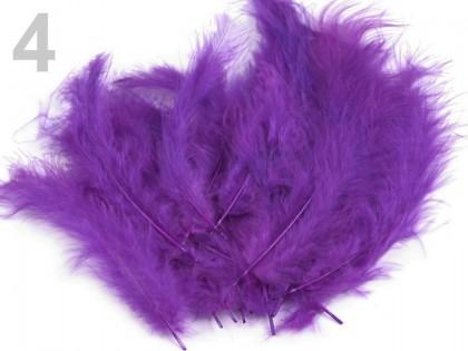 Pštrosie pierka fialová