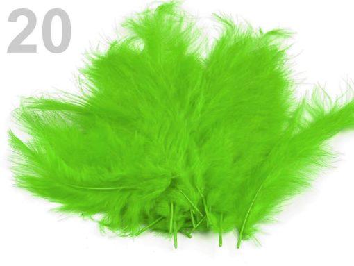 pstrosie pierka zelena svetla